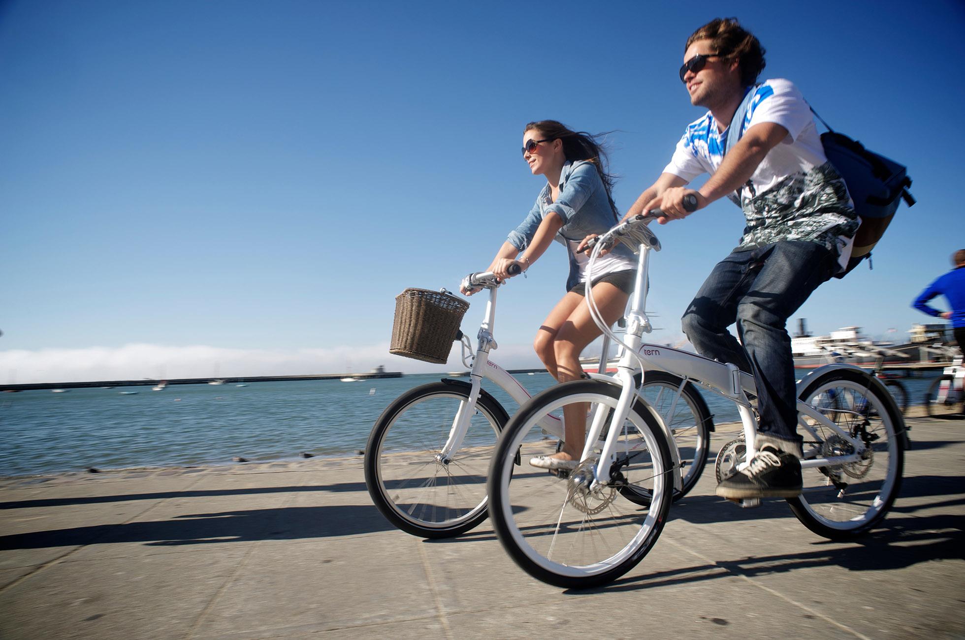 Biologic Holdall Basket Tern Folding Bikes Philippines